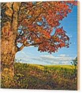 Maple Moon 2 Wood Print