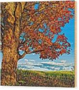 Maple Moon Wood Print