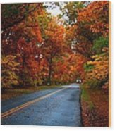 Maple Road Wood Print