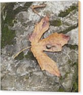 Maple Rock Wood Print