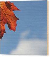 Maple Sky Wood Print