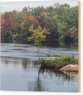 Maple Tree On A Rocky Island Wood Print