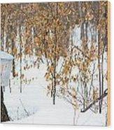 Maple Woods Wood Print