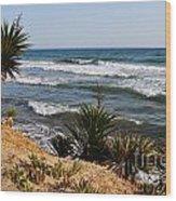 Marbella Beach Wood Print