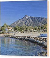 Marbella Holiday Resort In Spain Wood Print