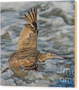 Marbled Godwit Flying Over Surf Wood Print
