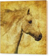 Marbled War Horse Wood Print