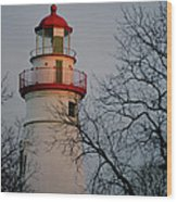Marblehead Lighthouse On Lake Erie  Wood Print