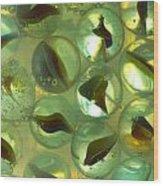 Marbles Cat Eyes Soda 1 B Wood Print