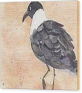 March Of The Laughing Gull Wood Print