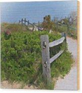 Marconi Beach Path Wood Print