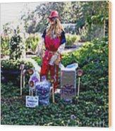 Mardi Gras Scarecrow At Bellingrath Gardens Wood Print