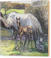 Mare And Foal Wood Print