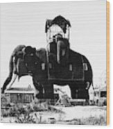 Margate Elephant, C1900 Wood Print