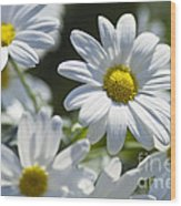 Marguerite Wood Print