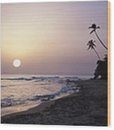 Marias Beach Sunset Rincon Puerto Rico Wood Print by George Oze