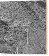Maricopa Hills Wood Print