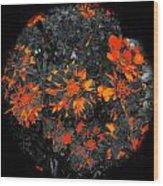 Marigold Fire Wood Print