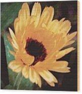 Marigold Impressions Wood Print