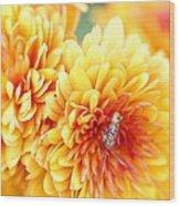 Ailanthus Webworm Visits The Marigold  Wood Print