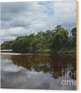 Marimbus River Brazil Reflections 4 Wood Print