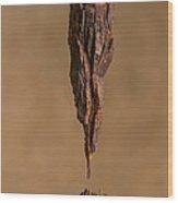 Marin Headlands 1 Wood Print
