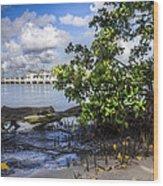 Marina At The Inlet Wood Print