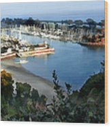 Marina Overlook Wood Print