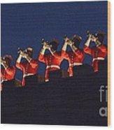 Marine Band At Night Wood Print