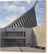 National Museum Of The Marine Corps In Triangle Virginia Wood Print