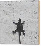 Marine Iguanas Galapagos Wood Print