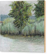 Mariner Point Park Wood Print