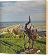 Marineres Trail Between Manitowoc And Two Rivers Wi Wood Print