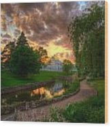 Marjorie Mcneely Conservatory Reflections Wood Print