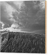 Marker - Black And White Photo Of Stone Marker And Brewing Storm In Kansas Wood Print