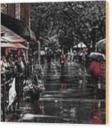Market Square Shoppers - Knoxville Tennessee Wood Print