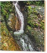 Marklackin Wood Print