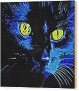 Marley At Midnight Wood Print