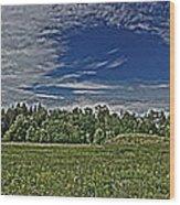 Marred Beauty Flight 93 Wood Print