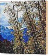 Marron Belles At Fall Wood Print