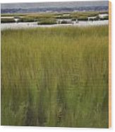 Marsh At Milford Point Wood Print