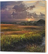 Marsh At Sunrise Wood Print