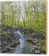 Marsh Creek In Spring Wood Print