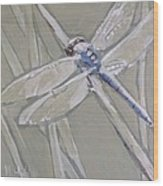 Marsh Dragonfly Wood Print