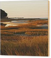 Marsh Grass Autumn Wood Print