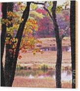 Marsh In Fall Wood Print