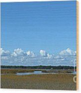 Marsh In Panacea Florida Wood Print