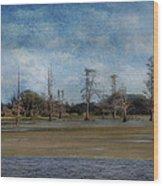 Marsh Lands  Wood Print