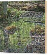 Marsh Light Wood Print