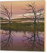 Marsh Oil Painting Wood Print